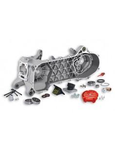 Coppia carter motore MALOSSI MHR C-one x PIAGGIO